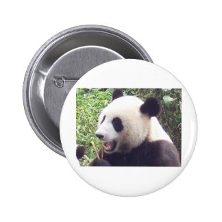 Panda Buttons