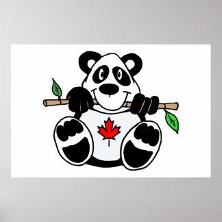 Panda canadiense póster