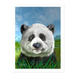 panda_card post card