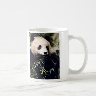 Panda Close-Up Coffee Mug