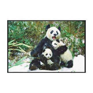 Panda con los cachorros envueltos impresión de lienzo