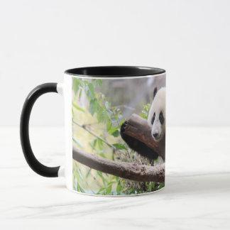 Panda Cub Mug
