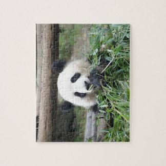 Panda Cub Munching Contently Jigsaw Puzzle