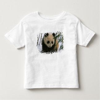 Panda cub on snow, Wolong, Sichuan, China Toddler T-shirt