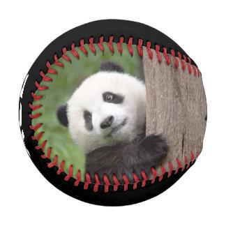 Panda cub Painting baseball