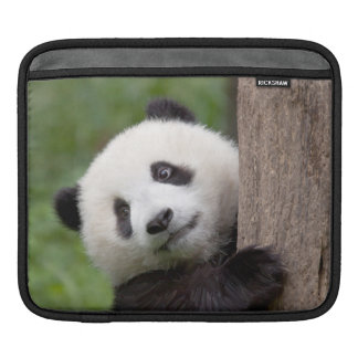 Panda cub Painting iPad Sleeve