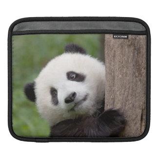 Panda cub Painting iPad Sleeve