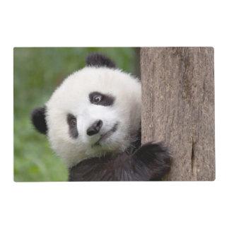Panda cub Painting placemat