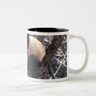 Panda cub playing on tree covered with snow, Two-Tone coffee mug