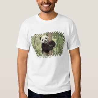 Panda cub playing on tree, Wolong, Sichuan, T-shirts