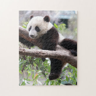 Panda Cub Relaxing In a Tree Jigsaw Puzzle
