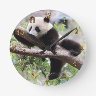 Panda Cub Relaxing In a Tree Round Clock