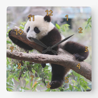 Panda Cub Square Wall Clock
