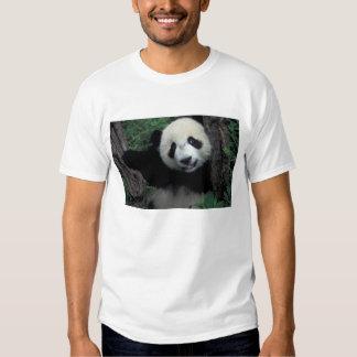 Panda cub with tree, Wolong, Sichuan Province, Tee Shirt