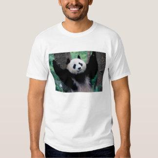Panda cub, Wolong, Sichuan, China Tees