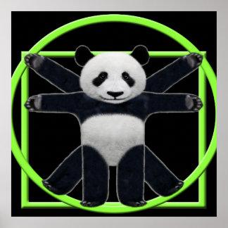 Panda de Vitruvian Poster