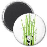 Panda del bebé en el bosque de bambú imán