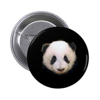 Panda del bebé pin redondo de 2 pulgadas