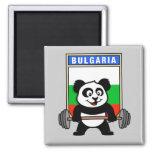 Panda del levantamiento de pesas de Bulgaria Imán De Frigorífico