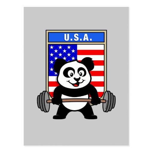 Panda del levantamiento de pesas de los E.E.U.U. Tarjeta Postal