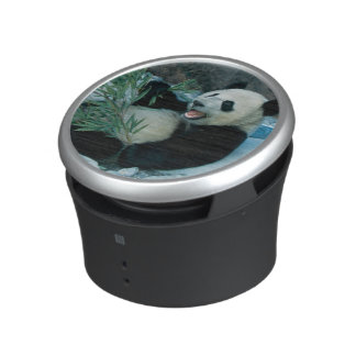 Panda eating bamboo by river bank, Wolong, 2 Bluetooth Speaker