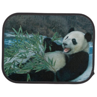 Panda eating bamboo by river bank, Wolong, 2 Floor Mat