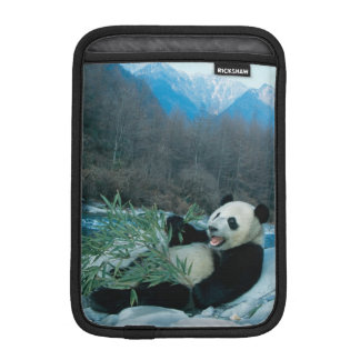 Panda eating bamboo by river bank, Wolong, 2 iPad Mini Sleeve
