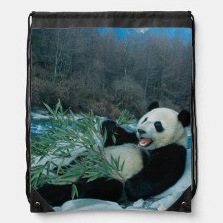Panda eating bamboo by river bank, Wolong, 2 Backpack