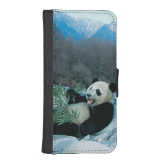 Panda eating bamboo by river bank, Wolong, 2 iPhone 5 Wallet Case