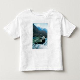 Panda eating bamboo by river bank, Wolong, 2 T Shirts