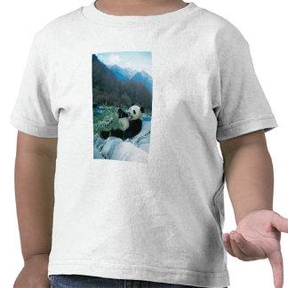 Panda eating bamboo by river bank, Wolong, 2 Tee Shirt