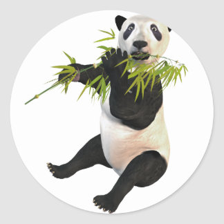 Panda Eating Bamboo Leaves Classic Round Sticker