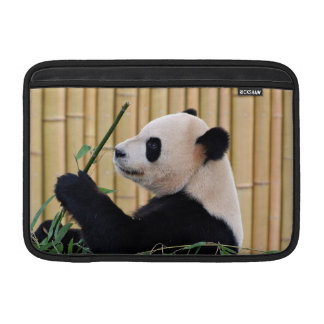 Panda Eating Bamboo MacBook Sleeve
