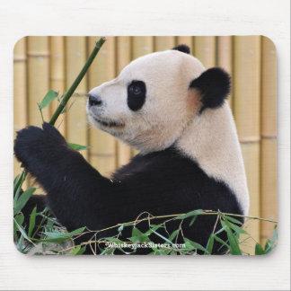 Panda Eating Bamboo Mousepads