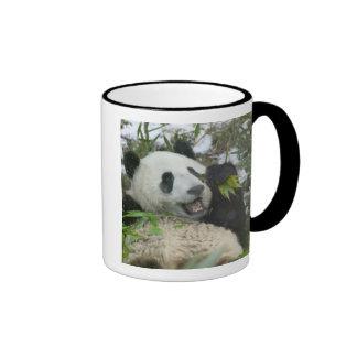 Panda eating bamboo on snow, Wolong, Sichuan, Ringer Mug