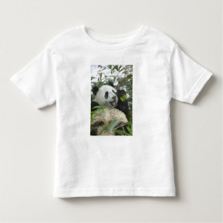 Panda eating bamboo on snow, Wolong, Sichuan, Toddler T-shirt