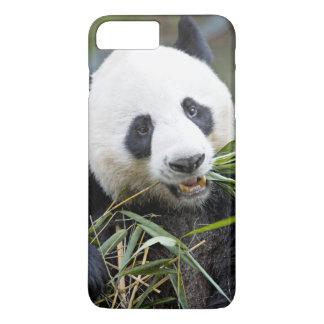 Panda eating bamboo shoots Alluropoda 2 iPhone 8 Plus/7 Plus Case