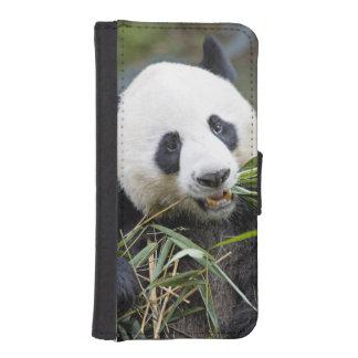 Panda eating bamboo shoots Alluropoda 2 iPhone SE/5/5s Wallet Case