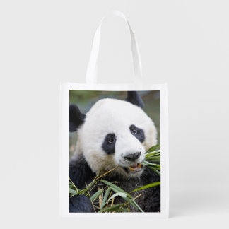Panda eating bamboo shoots Alluropoda 2 Reusable Grocery Bag