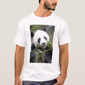 Panda eating bamboo shoots Alluropoda 2 T-Shirt