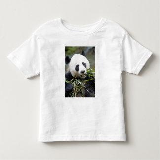 Panda eating bamboo shoots Alluropoda 2 Toddler T-shirt