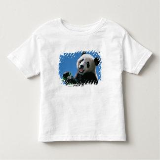 Panda eating bamboo, Wolong, Sichuan, China Shirt