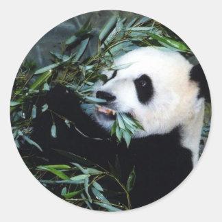 panda eating classic round sticker