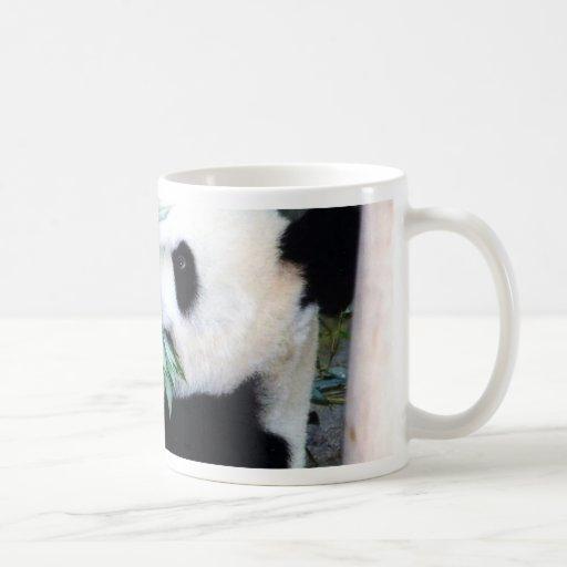 panda eating coffee mug