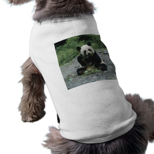 Panda Eating Doggie Tee