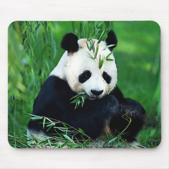 Panda Eating Leaves Mouse Pad