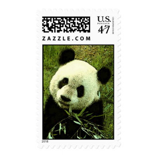 Panda Eating Leaves Postage