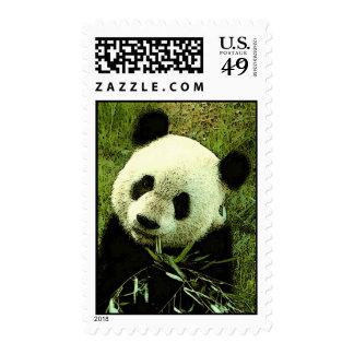 Panda Eating Leaves Postage