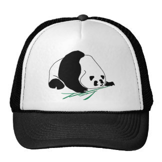 Panda Eats Bamboo In Tropical Forest Hat