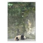 Panda el dormir tarjeton